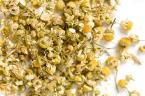 Chamomile and yeast infections