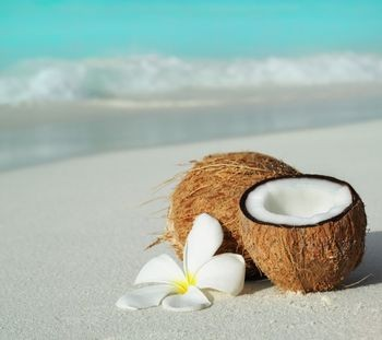coconut and yeast infections
